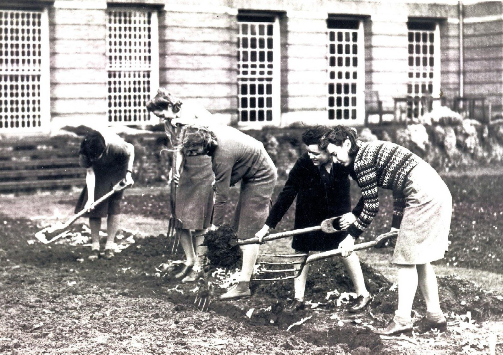 LMH students digging during WWII