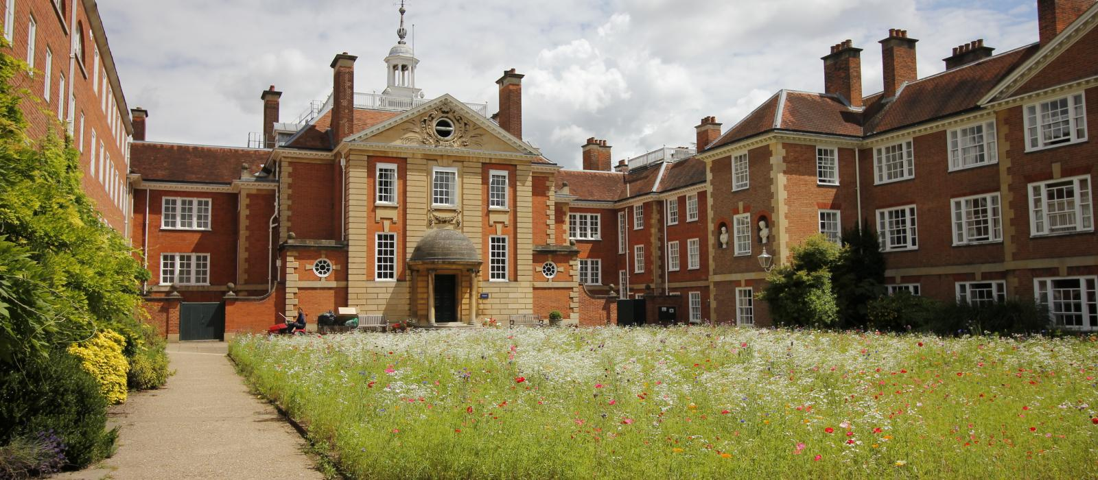 A view of Talbot Hall with the wildflower meadow