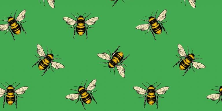 Bee carol graphic by Matthew Jackson, third year Music student (no text)